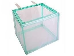 hang-on Fish Net Breeder for baby fish or sick aggresive fish -quarantine