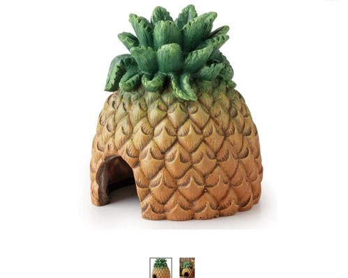Eco terra tiki 2 in 1 pineapple hide and feed station